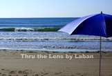 Beach and Umbrella Stock Photo #240
