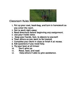 Beagle Classroom Rules Poster