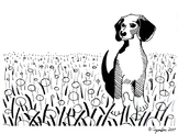 Beagle Coloring Sheet Horizontal