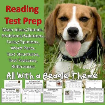 Beagles Grades 3-5 Reading Comprehension and Vocabulary Test Prep Packet