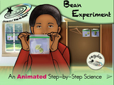 Bean Experiment - Animated Step-by-Step Science Project