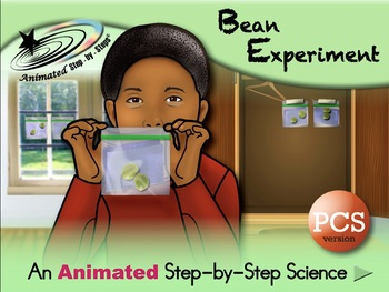 Bean Experiment - Animated Step-by-Step Science Project PCS