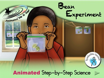 Bean Experiment - Animated Step-by-Step Science Project Sy