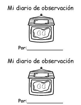 Bean Observation Journal - Spanish