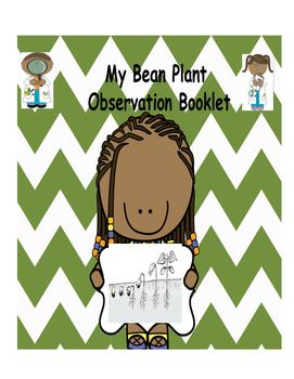 Bean Plant Observation Booklet