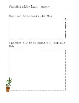 Bean Plant Prediction Page