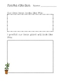 Bean Plant Prediction Page