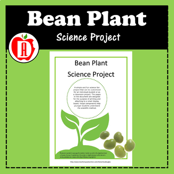 Bean Plant Science Project