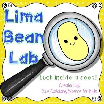 Lima Bean Lab {Aligns with NGSS:  K-LS1-1, K-ESS3-1,  2-LS2-1}