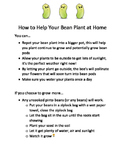 Bean Sprout- At Home Directions