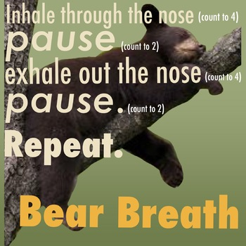 Bear Breath mindful breathing image