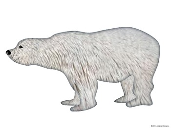 Bear Cutouts