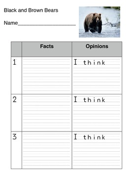Bear Fact and Opinion