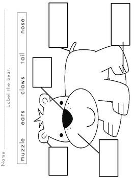 Bear Labeling