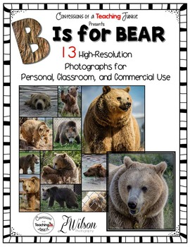 Bear Photographs for Classroom and Commercial Use