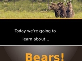 Bear Powerpoint! Black, Brown, Grizzly, Polar, Sun, Panda, Koala