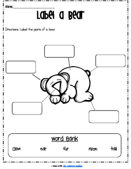 Learning with Bears: Combining Bear Snores On and Nonfiction books
