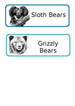 Bear Table Names