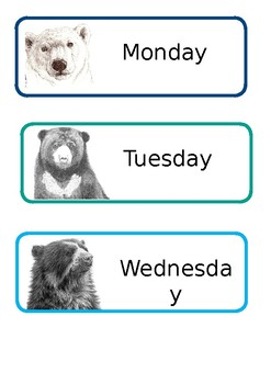 Bear Theme Weekday Draw Labels