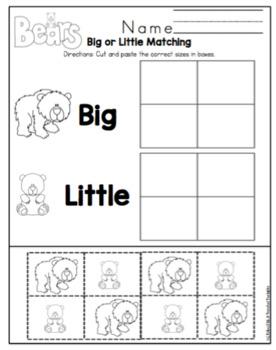 Bear Types Printable