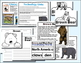Bear Writing and Craft Unit -Total Unit ~ Vocabulary ~ Graphic Organizers