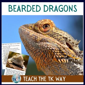 Bearded Dragon Classroom Pet Science Book By Teach The Tk Way Tpt