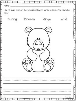 Bears - Literacy and Math Activities