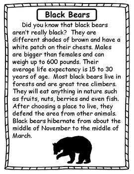 Bears - A Mini Unit on Black Bears and Polar Bears