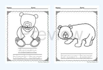 Bears Color and Trace