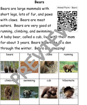 Bears: Informational Text and Writing Activity