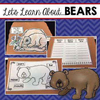 Bears (Interactive Book)
