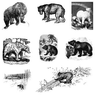 Bears clipart