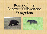 Bears of the Greater Yellowstone Ecosystem