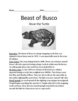 Beast of Busco - Crytpid Snapping Turtle - information facts lesson questions