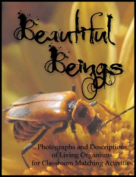 Beautiful Beings  Living Organisms Photo and Description Matching Activities