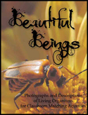 Beautiful Beings  Living Organisms Photo and Description M