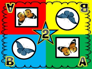 Beautiful Butterfly Kagan Inspired Team Mats for Early Childhood