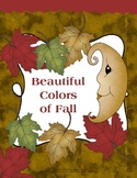 Beautiful Colors of Fall