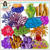 Beautiful Corals Clip Art, Coral Reef, Sea Anemone, Staghorn, Bubble, Polyp etc.