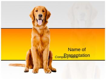 Beautiful Dog PPT Template