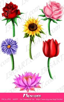 Beautiful Flower Illustrations Clipart 6 Pack Digital Grap