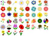 Beautiful Flowers, Tulips, Daisies, Sunflowers - SVG Clip