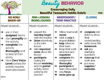 Behavior Rubric