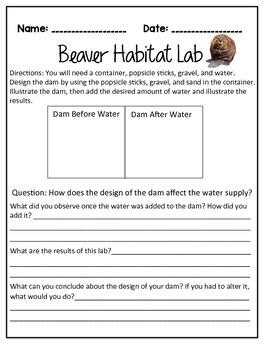 Beaver Habitat Lab