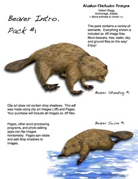 Beaver Intro. Pack #1