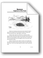 Beavers: Engineers of the Pond