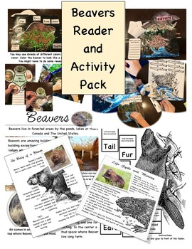 Beavers Reader and Activity Pack