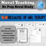 Because of Mr. Terupt Novel Study - No Prep Novel Unit