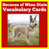 Because of Winn Dixie Activities | Because of Winn Dixie Novel Study