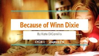 Because of Winn Dixie 5 Day Lesson Slideshow (Ch 1-6) pdf